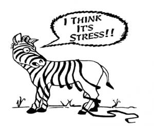Stress Capture